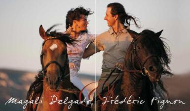 horsezone receives an equine postcard from france. Black Bedroom Furniture Sets. Home Design Ideas