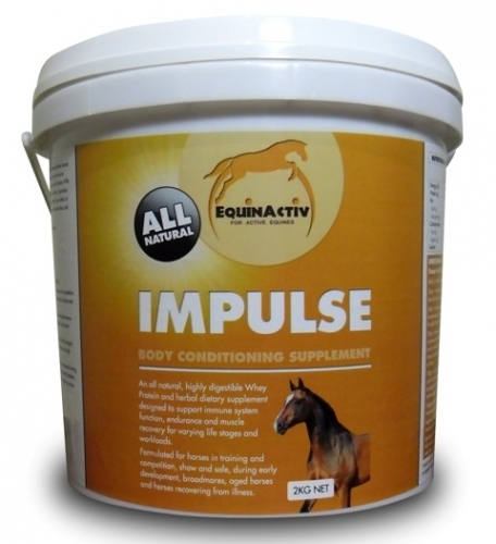 Improve Your Horses Condition Performance With Equinactiv