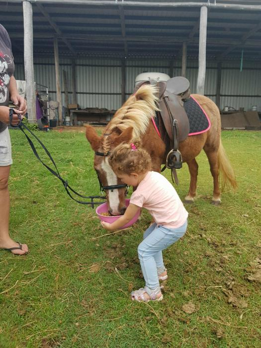'Raindrop' Quiet Kids pony