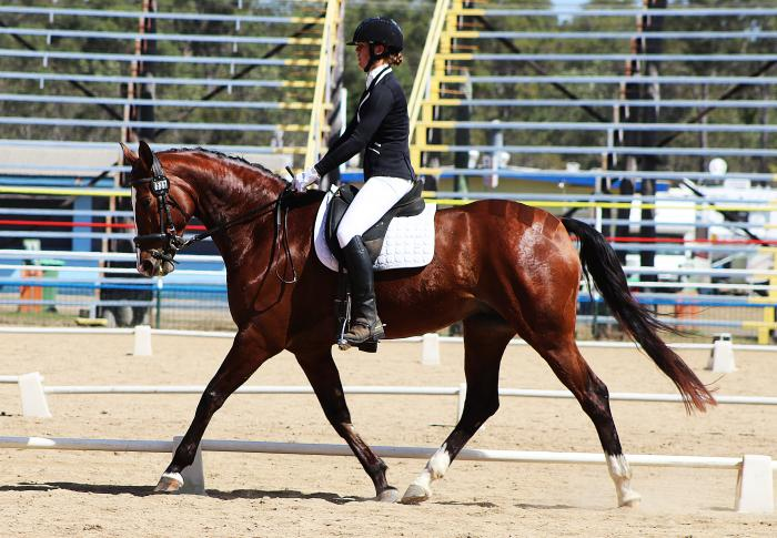 Competing Novice dressage with a young rider