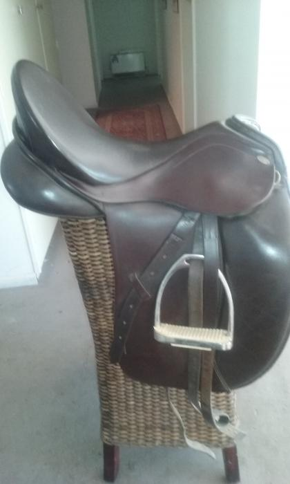 Search Horses For Sale Saddlery Transport Property