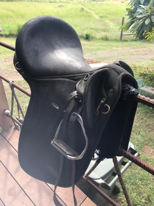 Wintec Stock Saddle