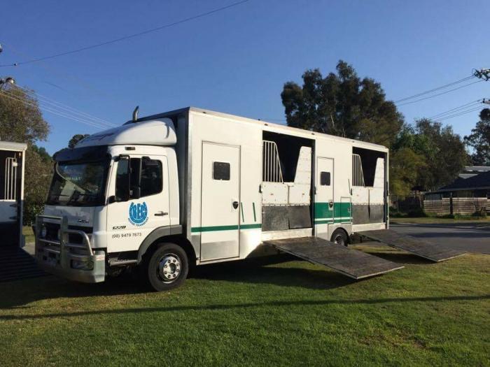 6 horse Mercedes atego horse truck