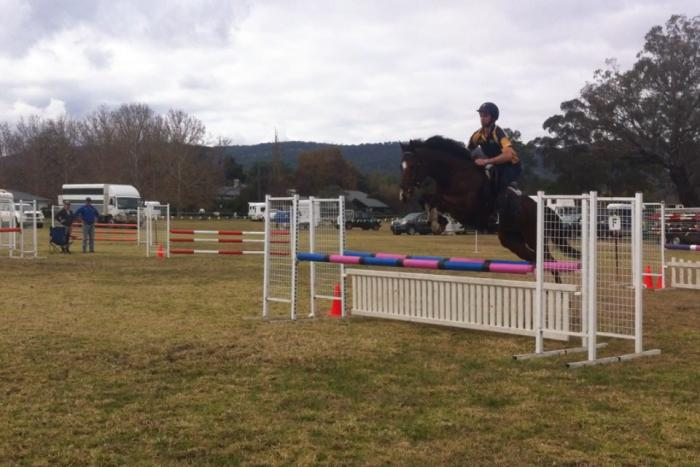 Stunning and Athletic Jumper / All Rounder