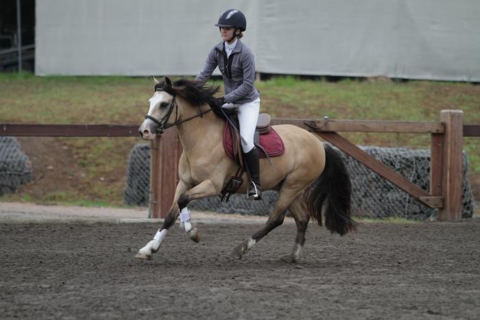 Exceptional Pony