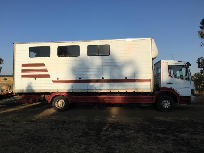 6/7 horse Truck