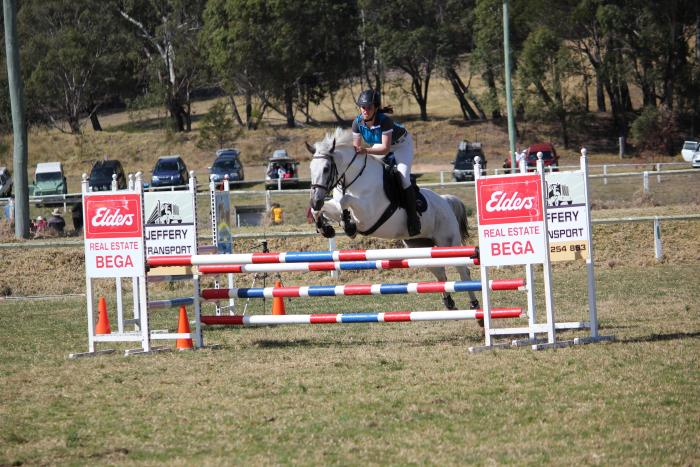 TALENTED AND COMPETITIVE SHOW JUMPING PONY