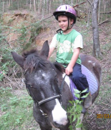 Max can be taken out on the road and on trail rides