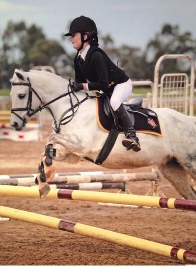 States show jumping
