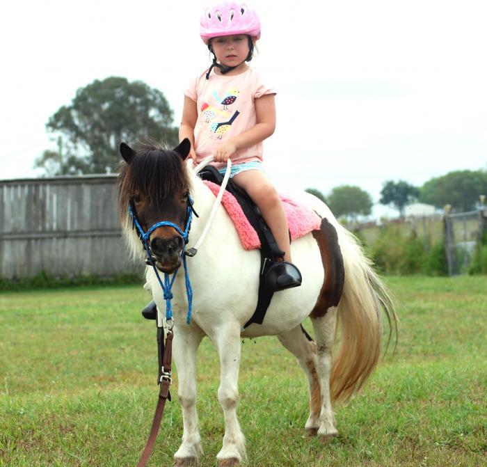 Leadline Mini Pony