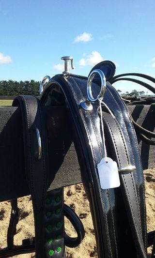 Australian Made - All Leather Harness