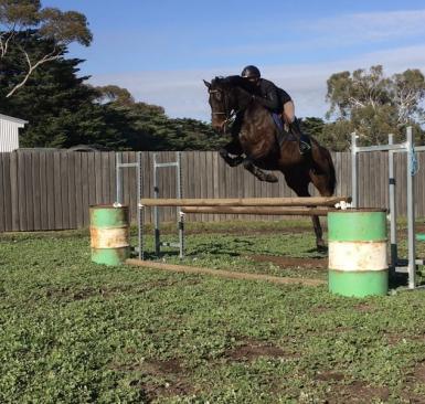 viminx jump 110