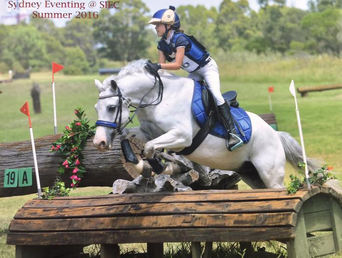 Junior Eventing Schoolmaster