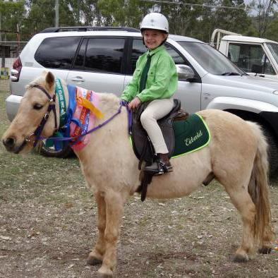 Lead Pony / Intermediate Rider