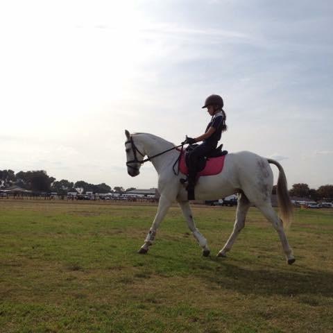 Salisbury Puzzle Riding Pony