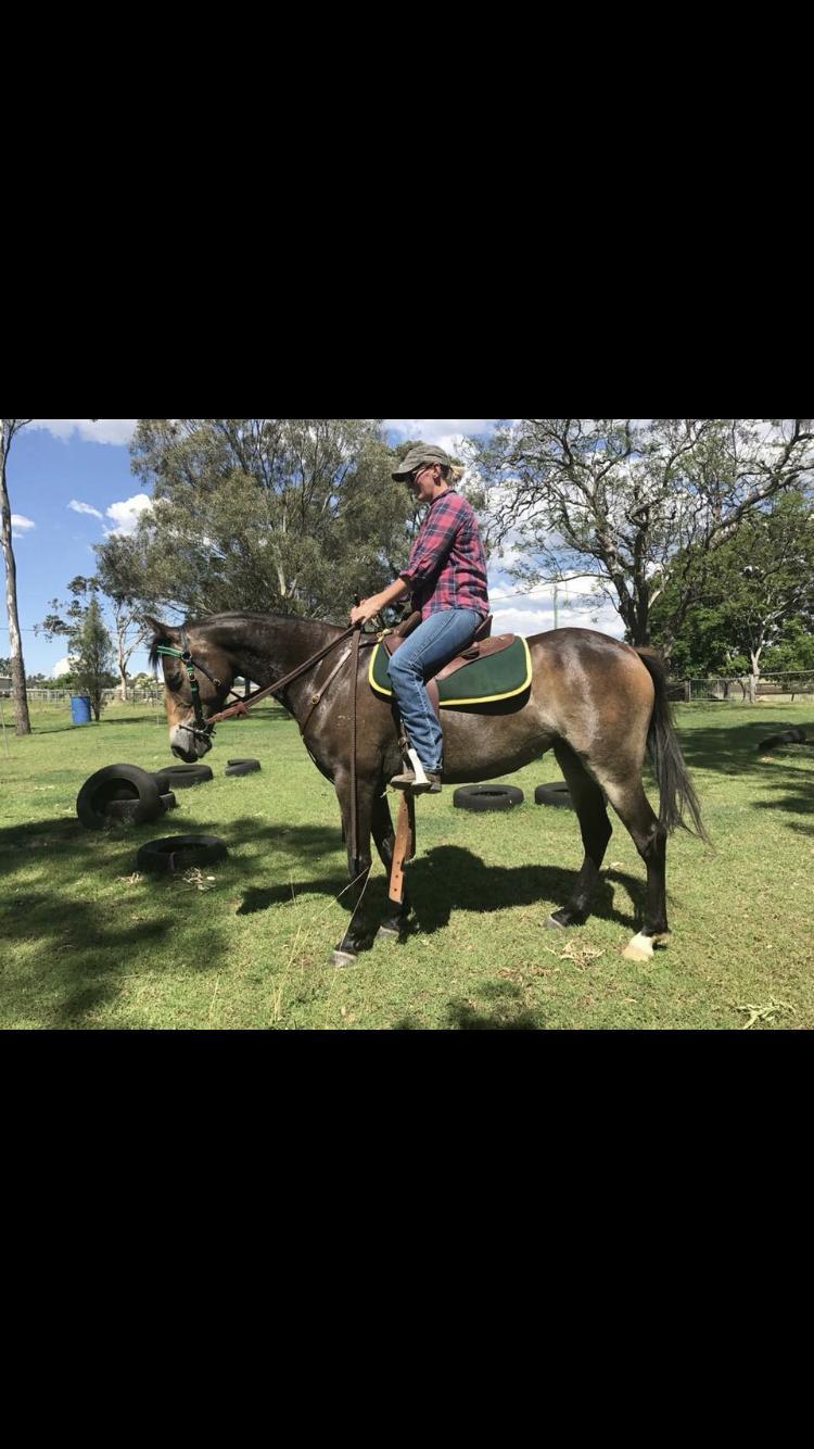 ASH mare