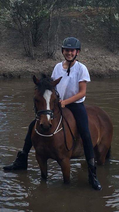Bella, Great kids pony.