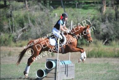 tinten interschool horsetrials 2014