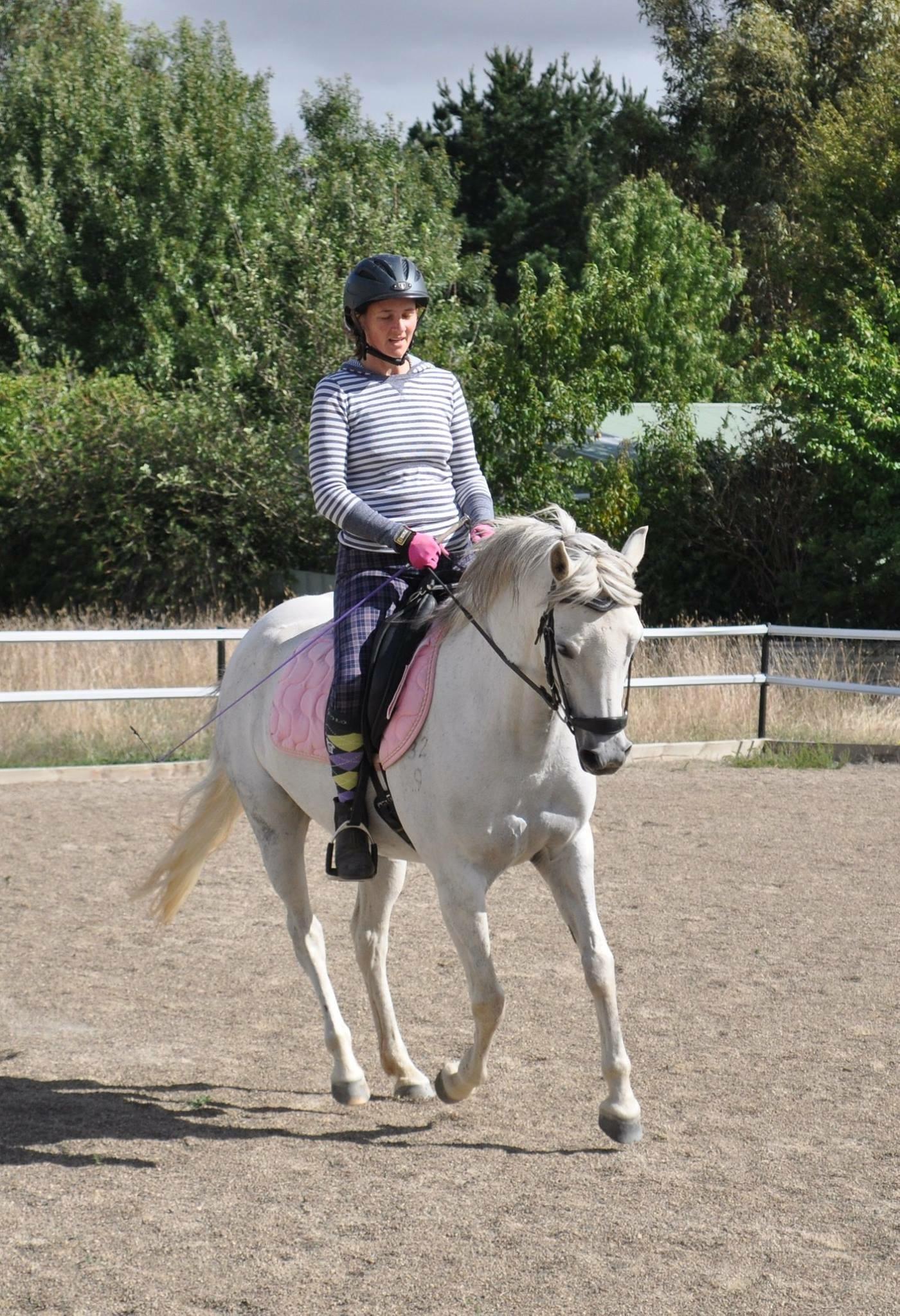Fun all rounder pony