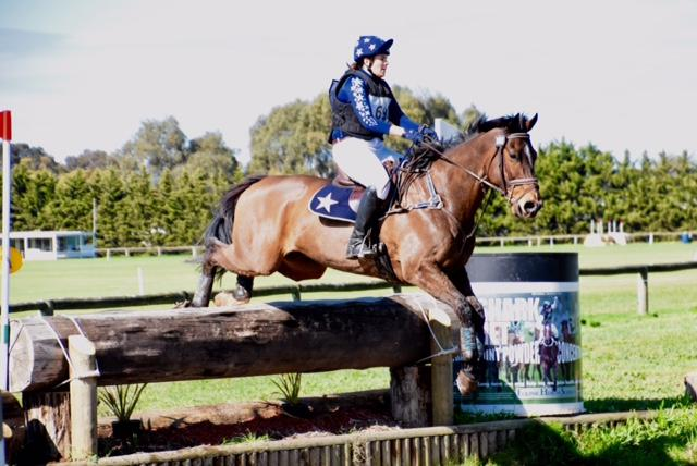 Consistent 2* Eventer - Priced to Sell!