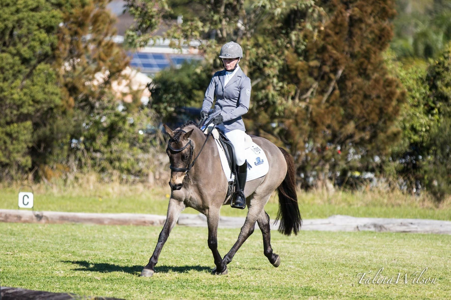 FEI Prospect Winning Dressage Pony