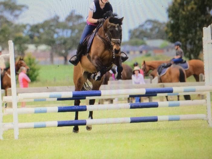 Superstar second pony