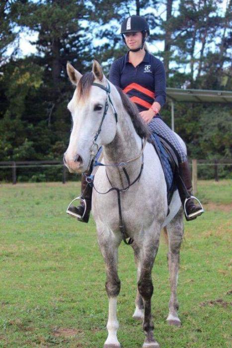Lovely mover- Lead Horse