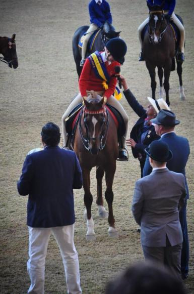 Reserve Champion Pony Club Rider - 2014 Sydney Royal Easter Show