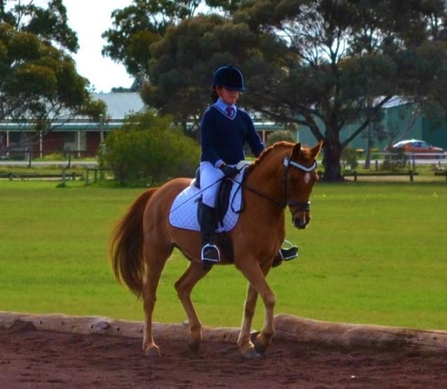 Exceptional Dream Pony - Interschool, Pony Club
