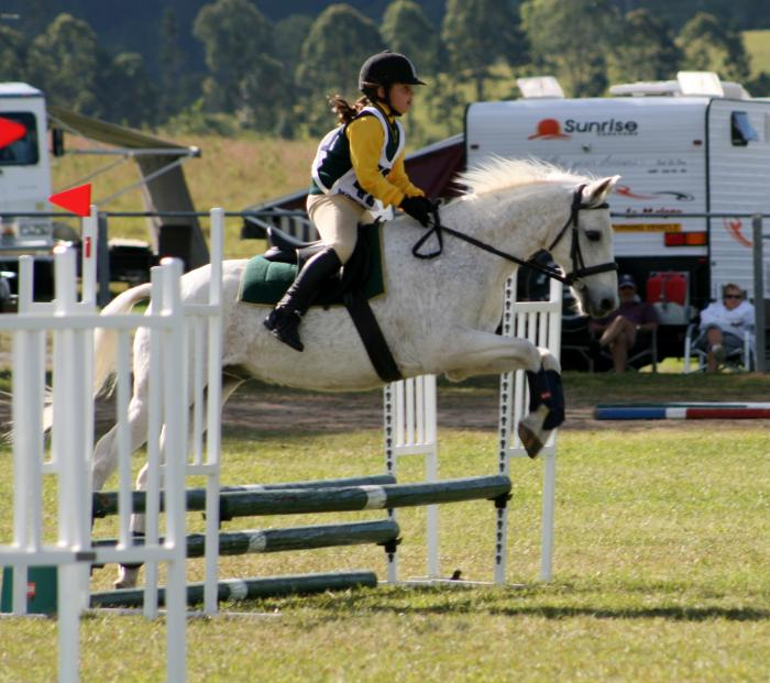 13.2hh Riding Pony – Best Allrounder