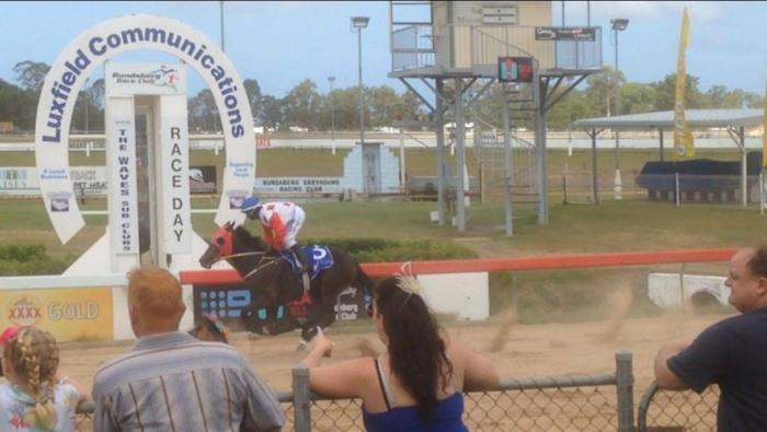 Black OTT mare- retired on the 4th