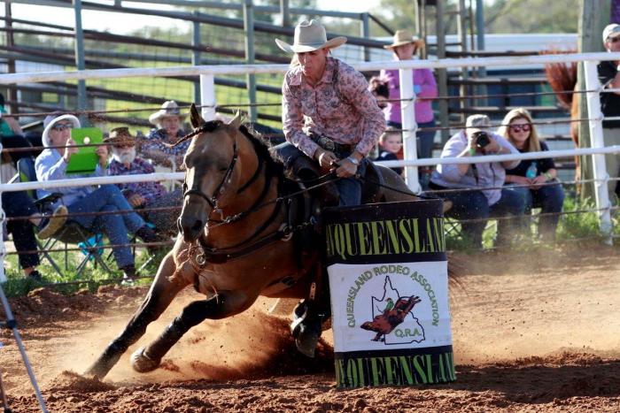 Miracle Fame (IMP) Quarter Horse - Barrel Racing