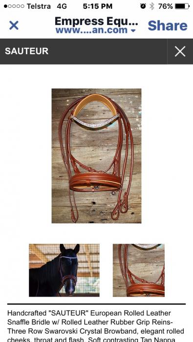 """Sautéur"" snaffle bridle with bling brand new"