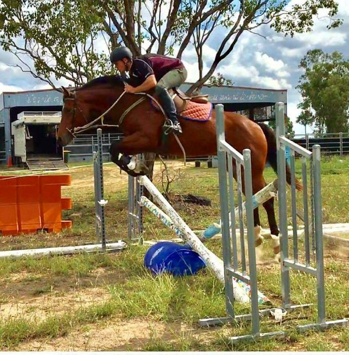 Elysian Fields Quintador Jumping Filly 4yr Class
