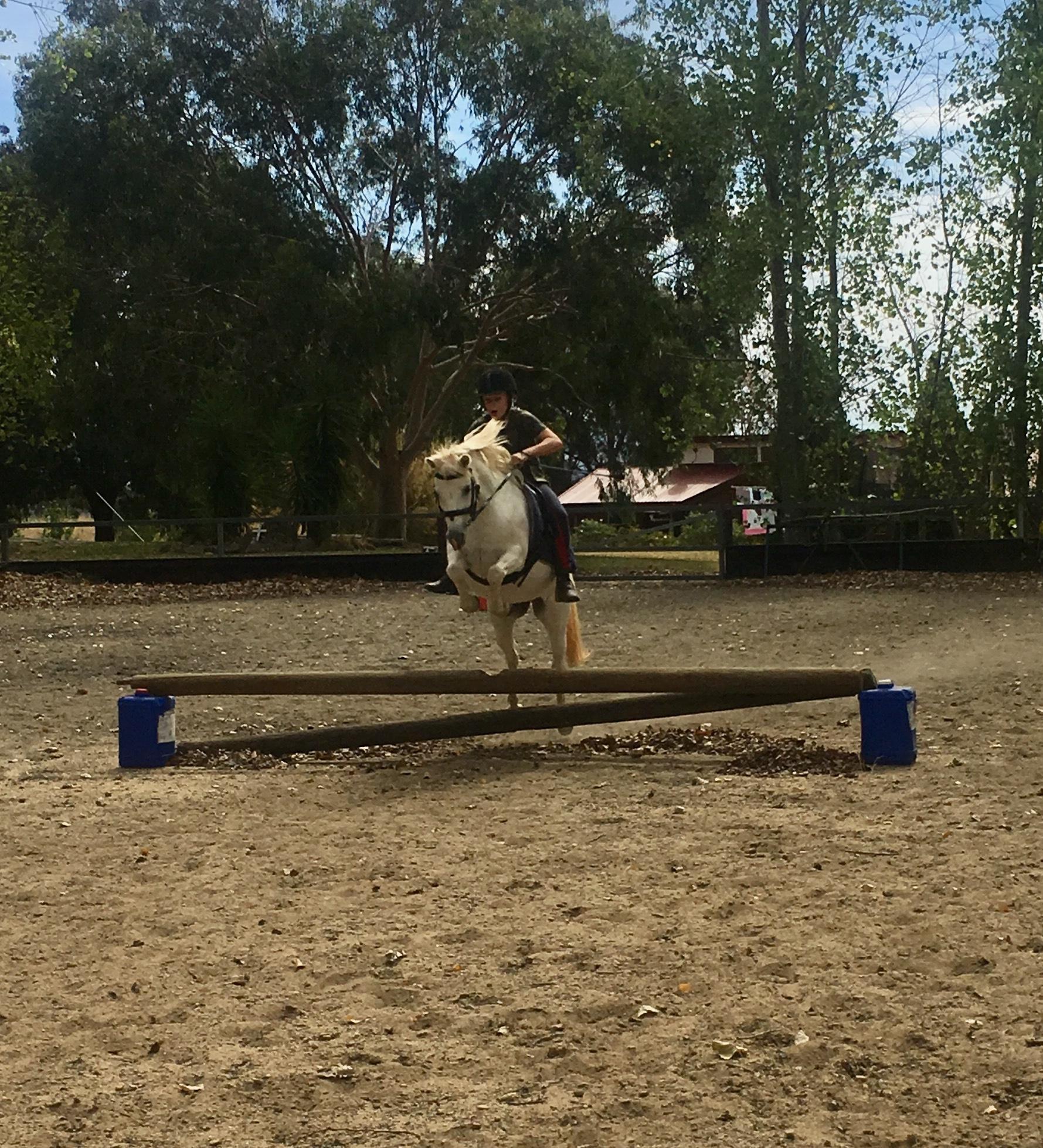 Safe, fun kids pony