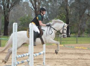 Fantastic Performance Pony