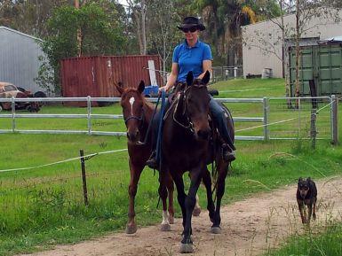 Ponying Romeo