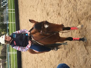 11yo girl riding Chex for her 1st time at team sorting