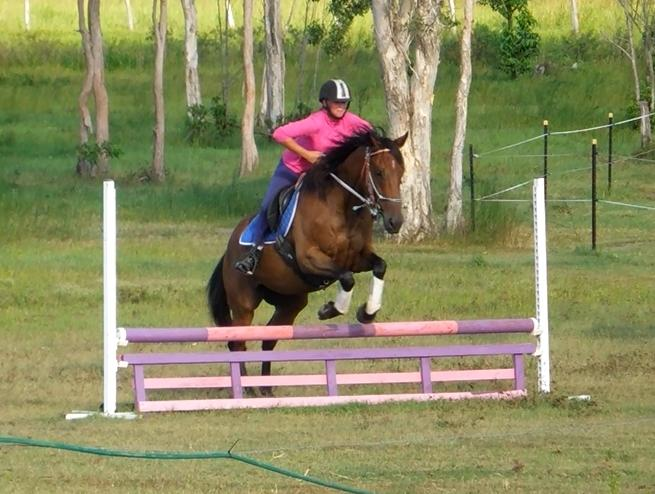 All Rounder, Jump or Trail
