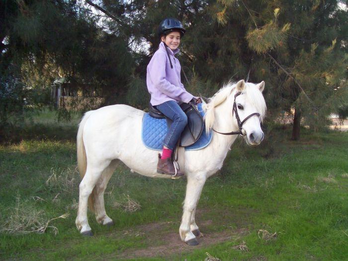 Pretty Kids Pony