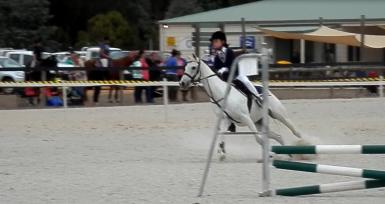 Leighdale showjumping B.E.S.T.