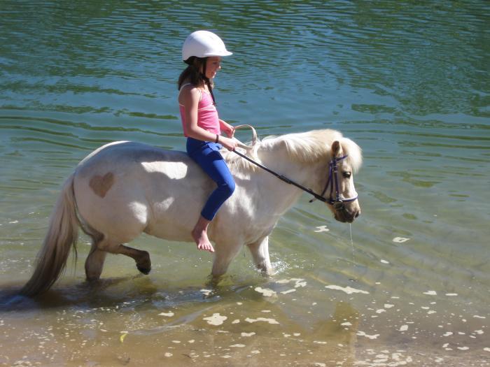 Perfect 1st Pony