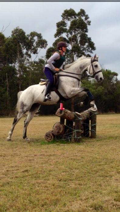 Hocus Pocus up and coming Eventer