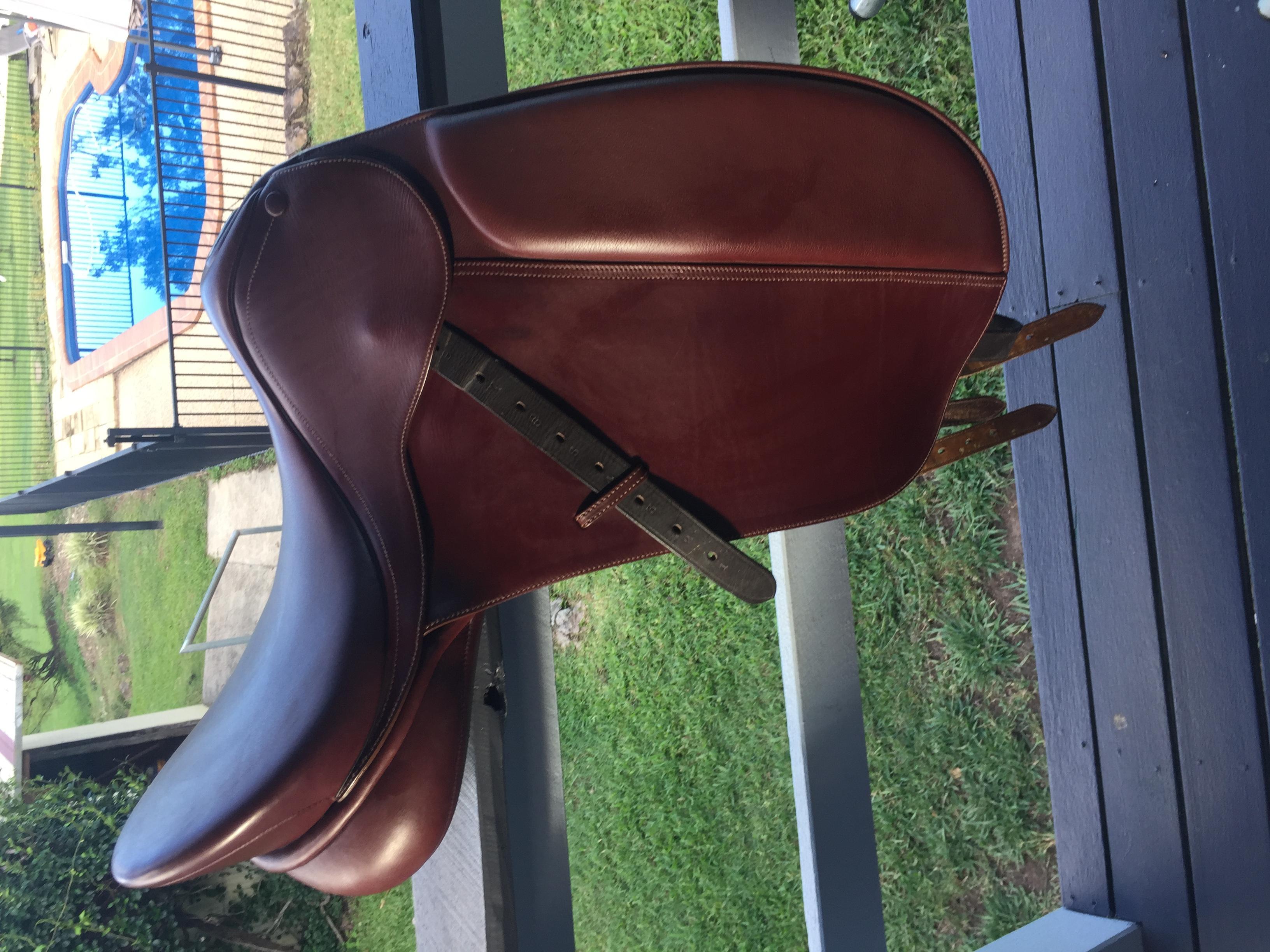 Bates caprilli show saddle