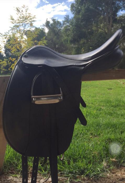Trainer Dressage Saddle