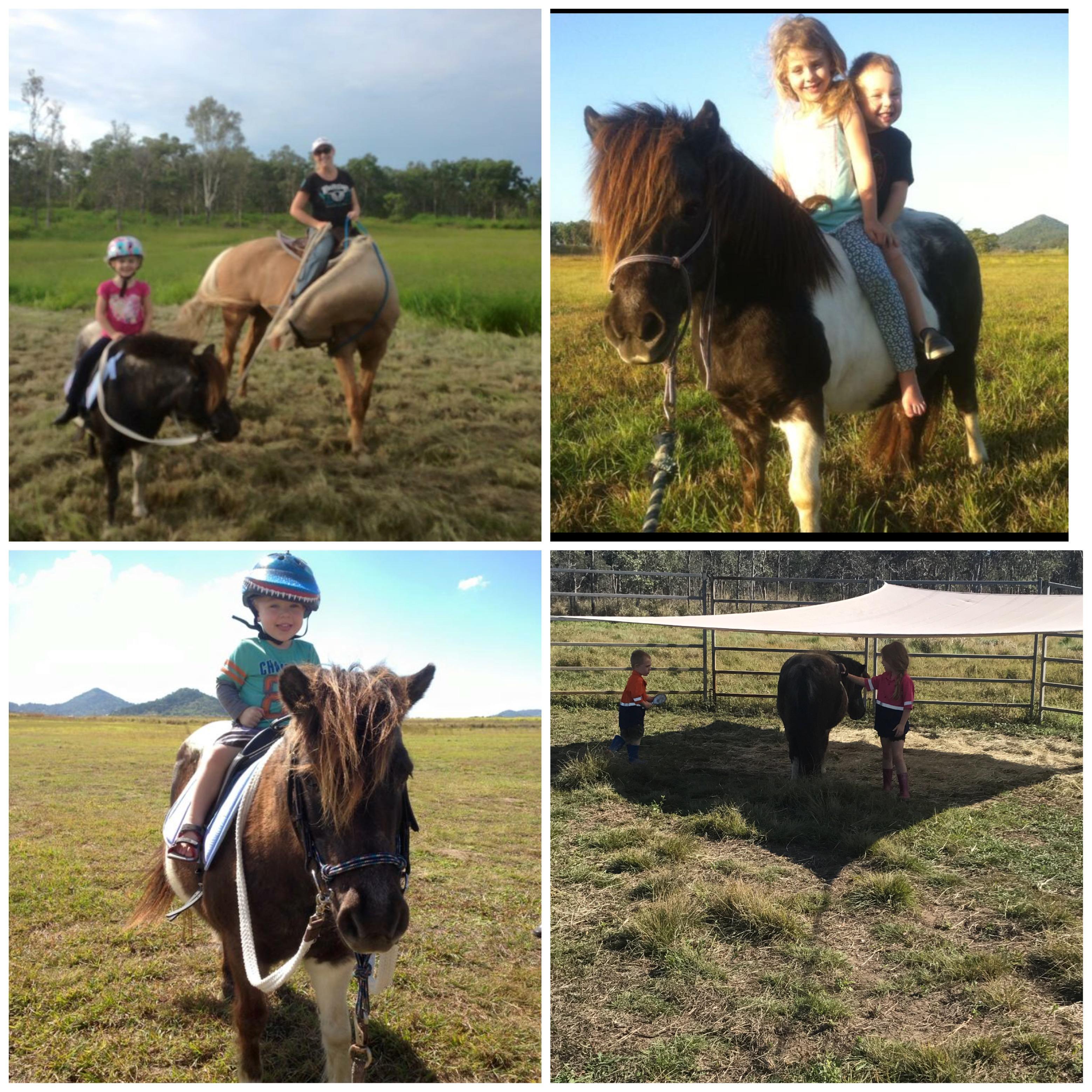 Brilliant kids Pony