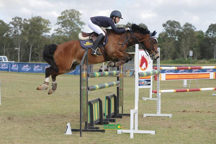 Eventing, Showjumping, Dressage you choose