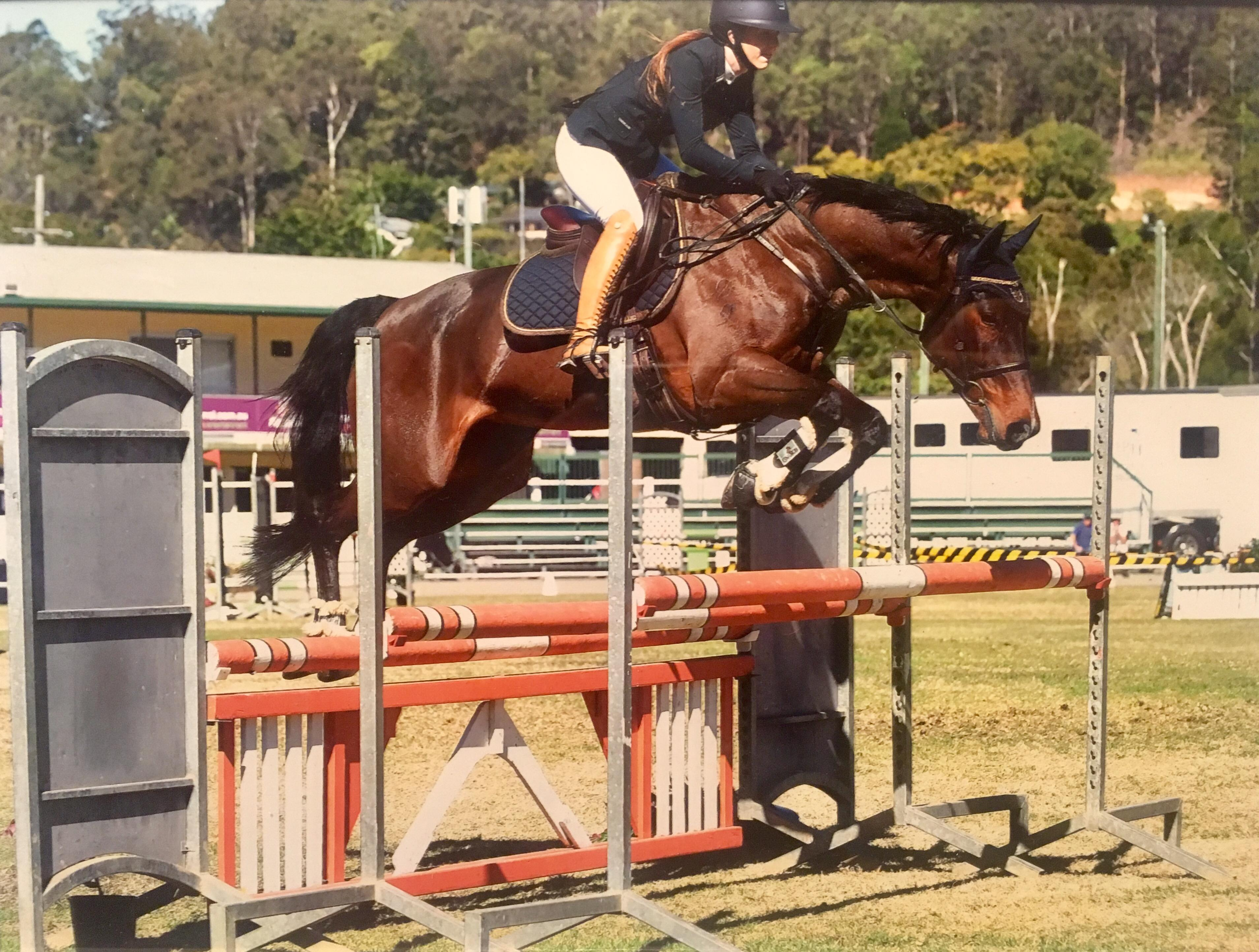 Brave and Clean mare by Thunder Down Under