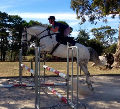 Showjumping clinic December