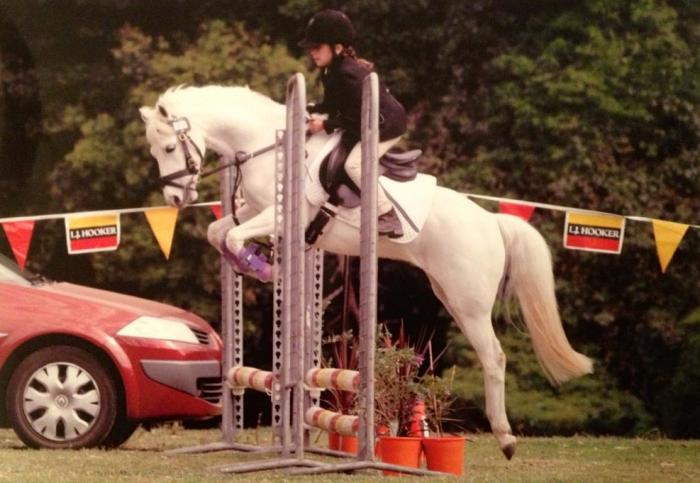 Price reduced. Fantastic all rounder pony.
